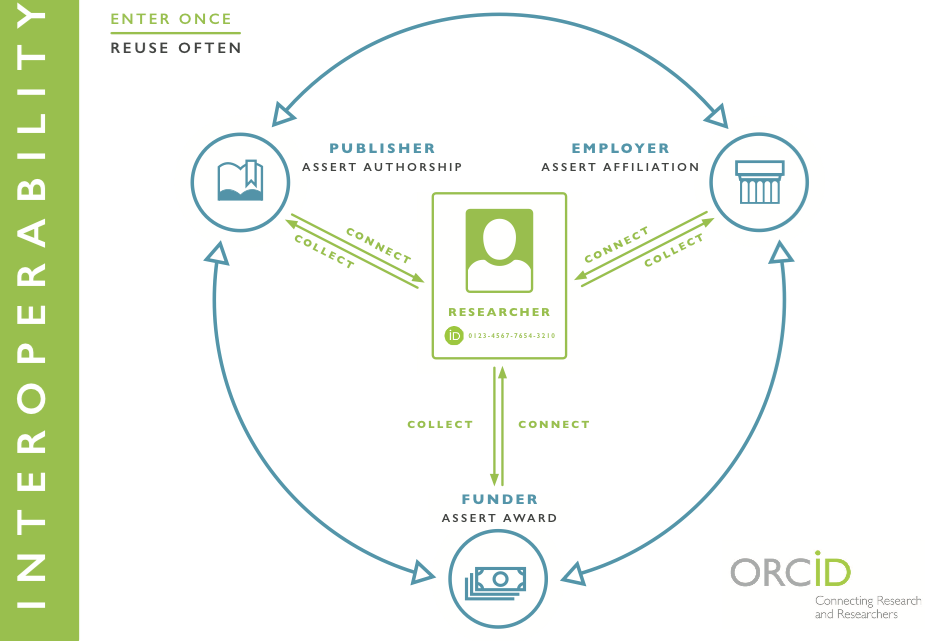 Interoperability image showing researcher at the center and actions by Employers, Funders, and Publishers to collect ORCID iDs from the researcher and share information about the researcher's professional activities and affiliations.